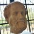 Head of Aristotle image