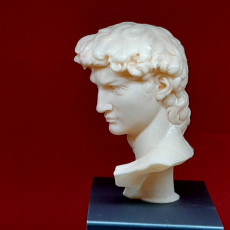 Picture of print of Head of Michelangelo's David