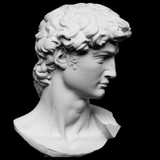 Head of Michelangelo's David