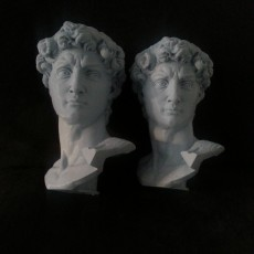 Picture of print of Head of Michelangelo's David This print has been uploaded by Julien Boucaron