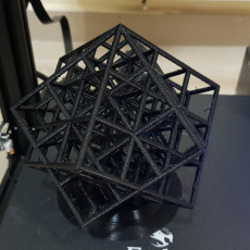 Picture of print of Spun Lattice Cube (Torture Test)
