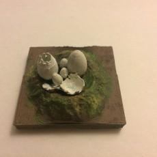 Miniature Hatched Nest Egg