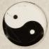 Taijitu (Yin-Yang Symbol) dual extrusion test image