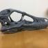 Raptor skull print image