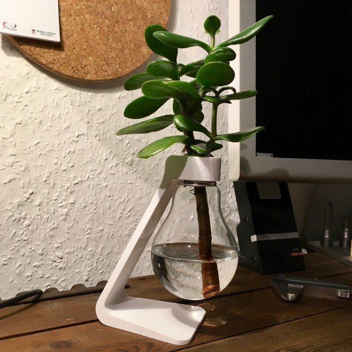 3d Printable Light Bulb Vase By Paul Wst