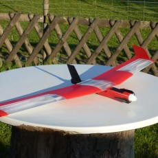 Speedy  Red Swept Wing  RC