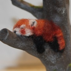 Picture of print of Red Panda Tree