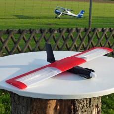 Speedy  Red Mini Wing  RC
