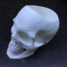 Picture of print of Skull Pot