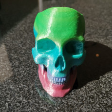 Picture of print of Skull Pot This print has been uploaded by Trevor L