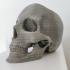 Skull Pot print image