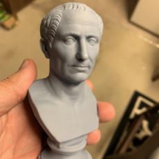 Picture of print of Farnese Caesar