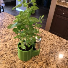 Esso - Self watering pot