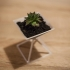 Pyramid - Flower Pot print image