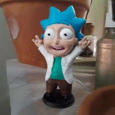 Picture of print of Tiny Rick! - 3D files This print has been uploaded by Darryl Ricketts