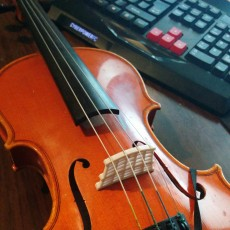 Replacement Violin Bridge