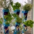250ml Can Modular Vertical Wall Planter System image