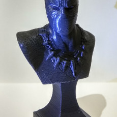 Picture of print of BLACK PANTHER BUST
