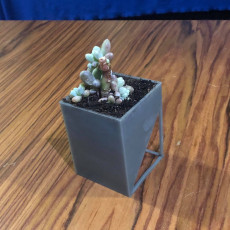 Picture of print of Square Pot - Flower Pot