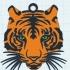 tigre multi-couleur image