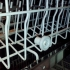Bauknecht dishwasher pulley image