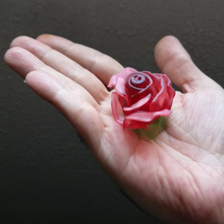Rose Blossom Tops