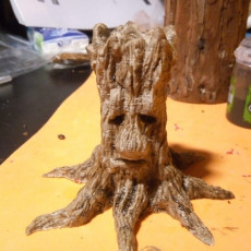 Picture of print of Old Tree Spirit