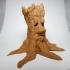 Old Tree Spirit image