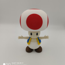 Picture of print of Toad from Mario games - Multi-color