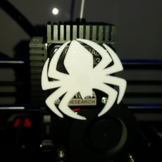Picture of print of Spider