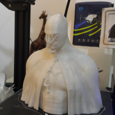 Picture of print of Batman - The Caped Crusader Bust Cet objet imprimé a été téléchargé par David Gidony
