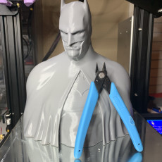 Picture of print of Batman - The Caped Crusader Bust Cet objet imprimé a été téléchargé par Mike Thomas