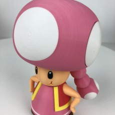 Picture of print of Toadette from Mario games - Multi-color
