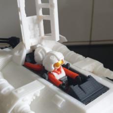 Picture of print of Rebel Pilot