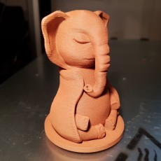 Picture of print of Serene Elephant This print has been uploaded by 3DbiagioLAB
