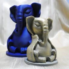 Serene Elephant