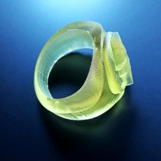 Picture of print of The Flash Ring