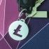 Crypto keychain: Litecoin image
