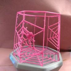 Spiderweb Lantern for Halloween
