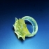 Hearthstone Ring image