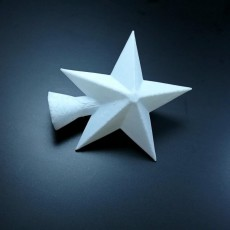 Picture of print of Christmas tree star