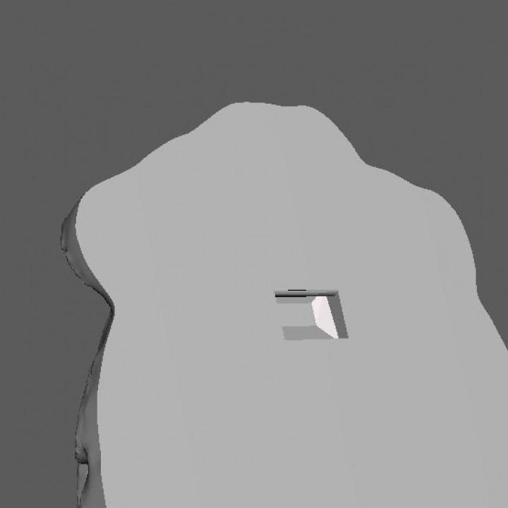Lion Head Wall Hanger (Sculpture 3D Scan)