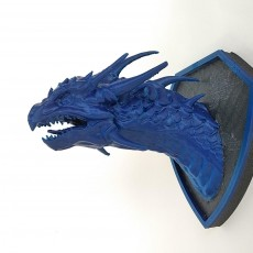 Picture of print of Dragon Head Wall Mount (Trophy)