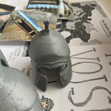 Picture of print of Pretorian Helmet 3D Scan