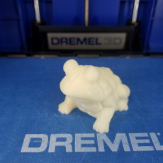 Picture of print of Frog Sculpture 3D Scan