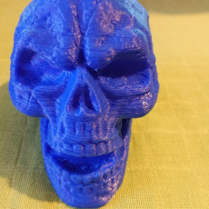 Picture of print of Skull Sculpture 3D Scan (Including Hollow Version)