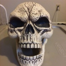 Skull Sculpture 3D Scan (Including Hollow Version)
