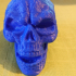 Skull Sculpture 3D Scan (Including Hollow Version) image
