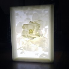 Picture of print of More-Than-a-Lithophane Camellia & Rose Lamp