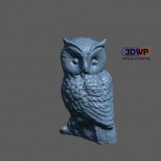 Owl Sculpture 3D Scan